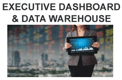 How business executives can predict the future through data and dashboards.